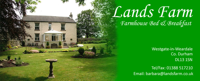 Lands Farm Bed and Breakfast